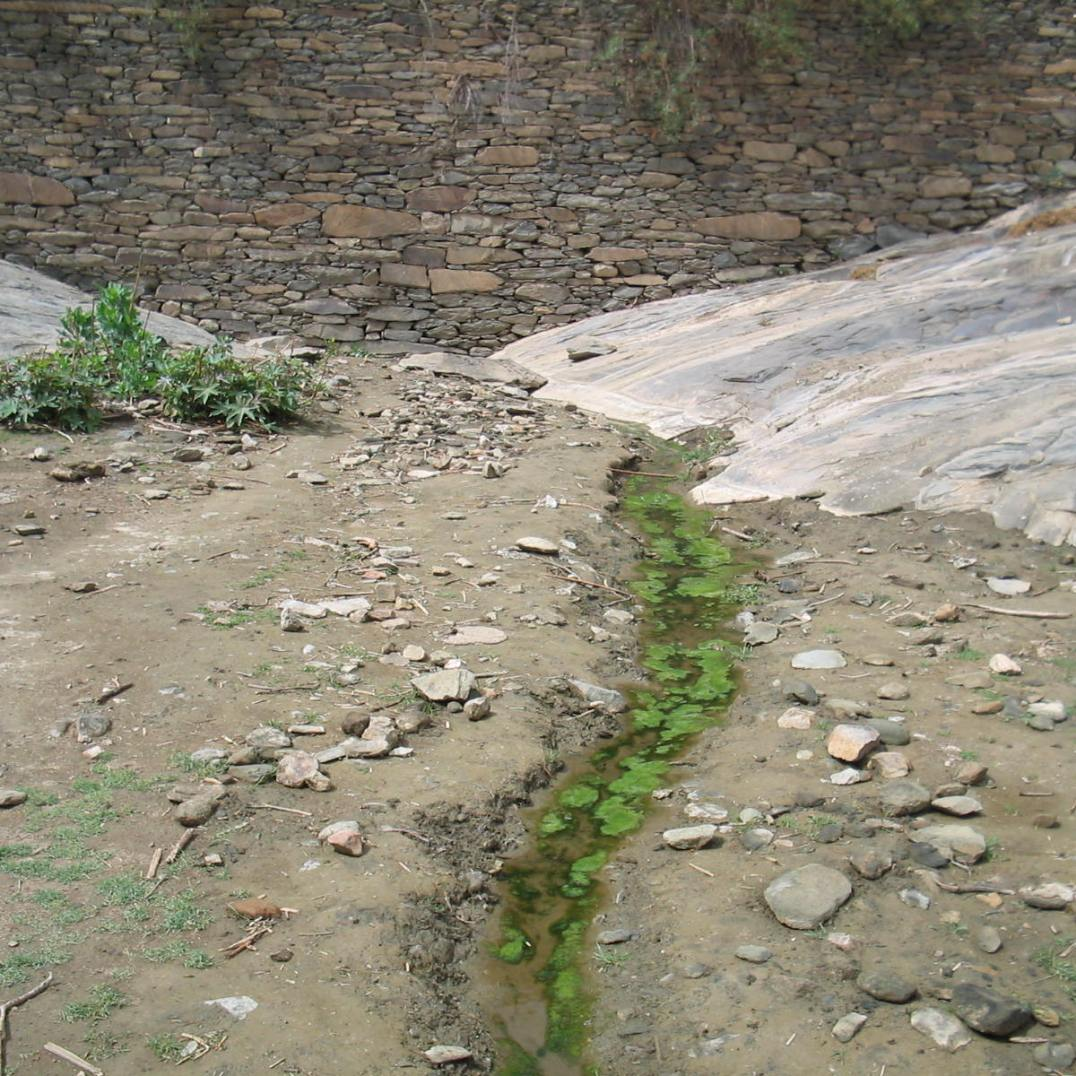 Water conservation: A brook raises at the bottom of a check dam (North Ethiopia, 2003)