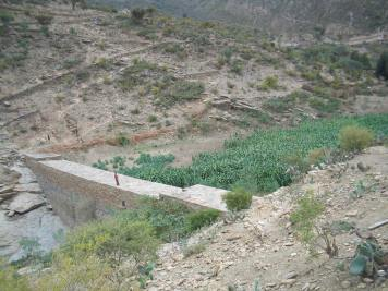 Check dams: Alluvial soils provide fruitful agricultural areas (North Ethiopia, 2003)