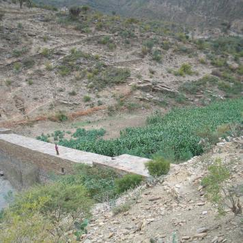 Check dams: Alluvial soils provide fruitful agricultural areas (North Ethiopia, 2003)