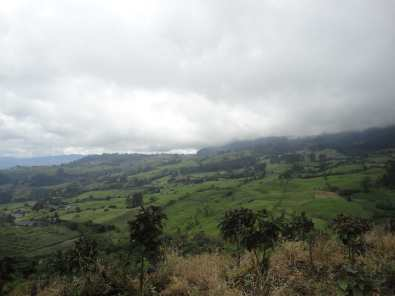 Properous Colombian valleys (2012)