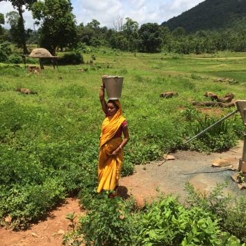Keonjhar (Somagiri), OKeonjhar, Odisha 2015: Project area of Somagiri Tribal Health Centre